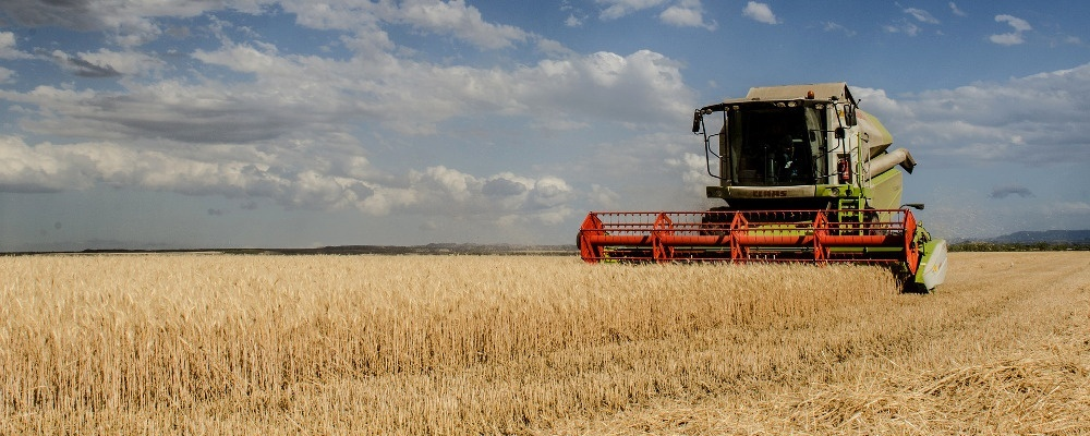 Landwirtschaft, Getreide, Ernte, © Pixabay