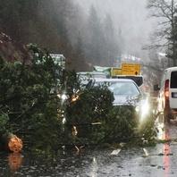 Burglind, Unwetter, Sturm, Orkan, Feuerwehr, Baum