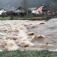 Hochwasser, Unwetter, Elz, Waldkirch, Überflutung
