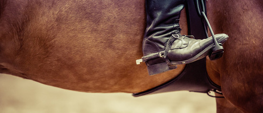 Reiter, Pferd, Ausritt, © Pixabay