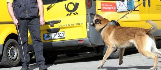 DHL, Post, Hund, Briefträger, © Franziska Kraufmann - dpa
