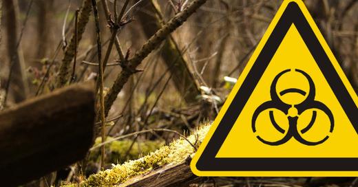 Biohazard, Gefahr, © CC0 - Public Domain