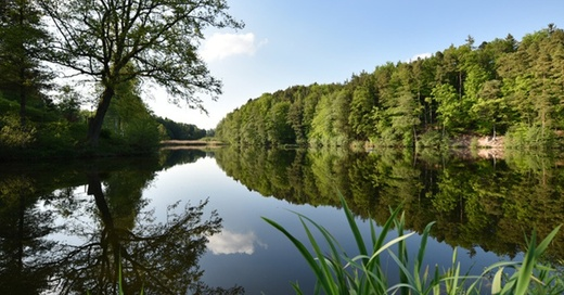 Badesee, Baggersee, Wasser, © Jan-Philipp Strobel - dpa