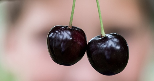 Kirsche, Kirschernte, Obst, © Patrick Seeger - dpa