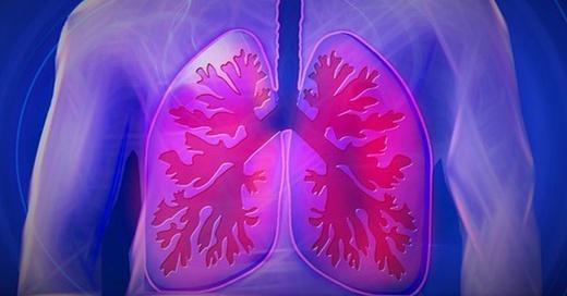 Lunge, Lungenkrebs, Vortrag, Moderne Therapieverfahren, © pixabay.com
