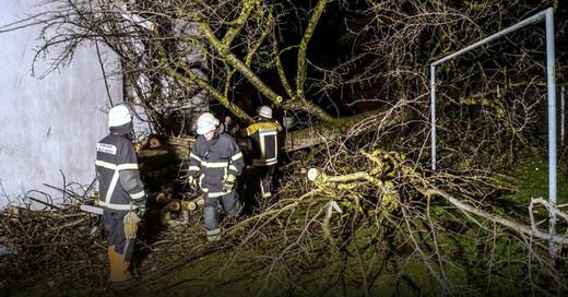 Feuerwehr, Baum, Unwetter, © Dettenmeyer - SDMG / dpa
