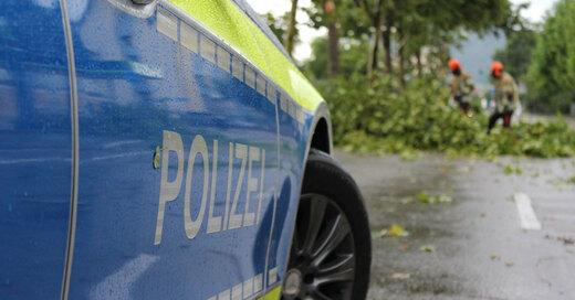 Polizei, Sturm, Unwetter, Baum, © Pixabay (Symbolbild)