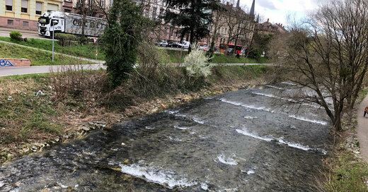 Dreisam, Freiburg, Ufer, B31, © baden.fm (Symbolbild)
