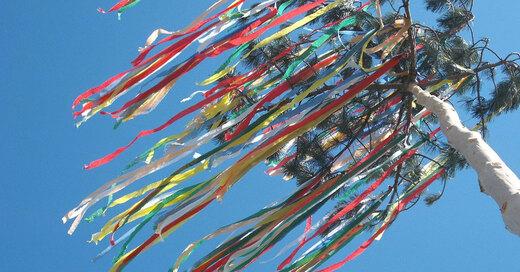 Maibaum, Tradition, Brauchtum, © Pixabay (Symbolbild)