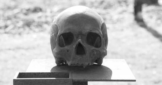 Schädel, Skelett, Knochen, Totenkopf, © Pixabay (Symbolbild)