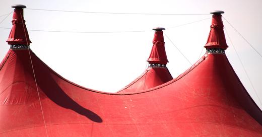 Zeltmusikfestival, ZMF, 2019, Zirkuszelt, © baden.fm (Symbolbild)