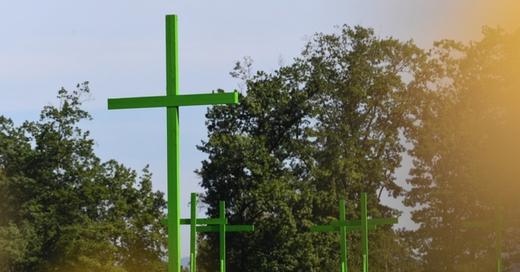 grüne Kreuze, Bauern, Agrarpolitik