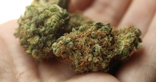 Drogen, Rauschgift, Marihuana, Gras, Cannabis, © Pixabay (Symbolbild)