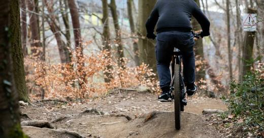 Freiburg, Mountainbike, Trail, Borderline, Wald, Fahrrad, © Philipp von Ditfurth - dpa (Symbolbild)
