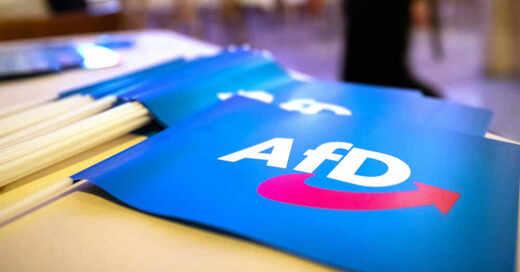 AfD, Alternative für Deutschland, Bundesparteitag, Fahne, © Daniel Karmann - dpa (Symbolbild)