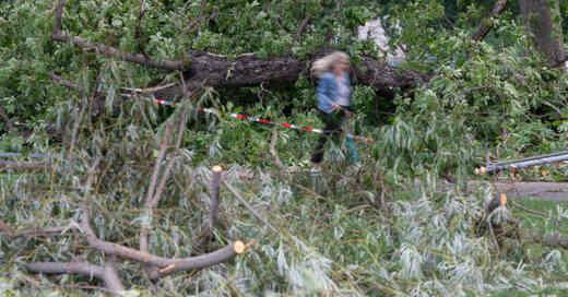 Unwetter, Sturmschäden, Sturm, Orkan, Bäume, Äste, Gewitter, © Marijan Murat - dpa (Symbolbild)