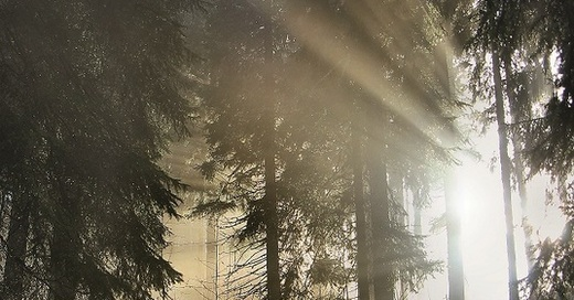 Sagenwanderung mit der Breitnauer Bauernbühne, © © Veranstalter