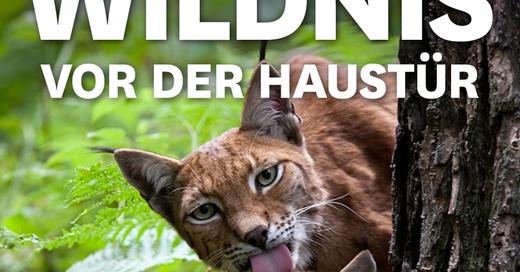 MUNDOLOGIA: Wildnis vor der Haustür, © © Veranstalter