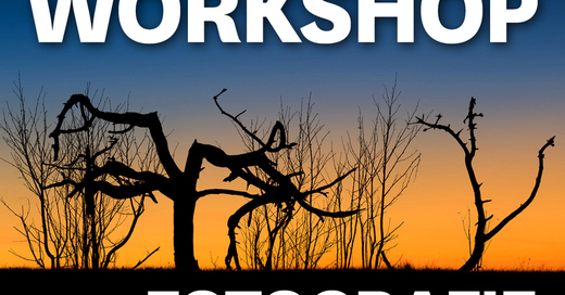 MUNDOLOGIA-Workshop: Fotografie für Einsteiger, © © Veranstalter