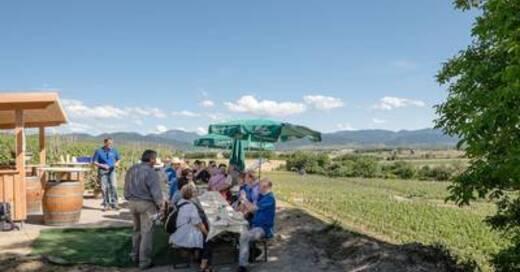 Kulinarische Weinwanderung auf dem Bad Krozinger Rebberg, © © Veranstalter