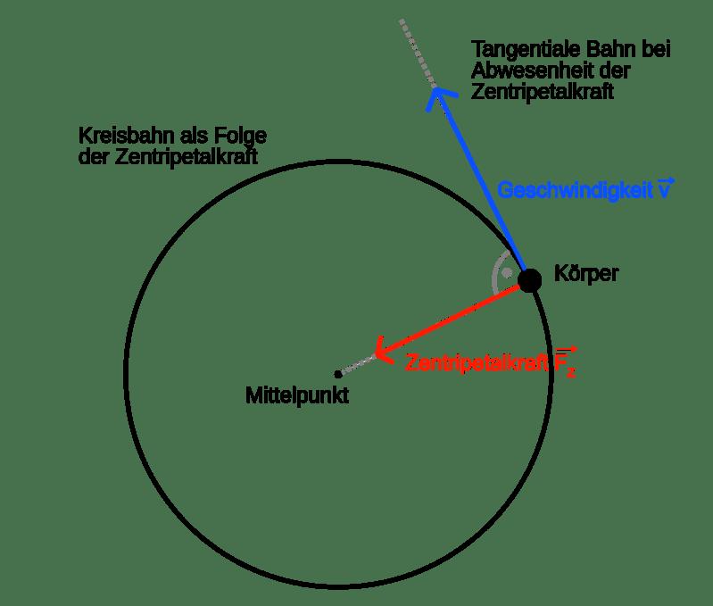 Zentripetalkraft, © Tobias Rütten/Wikimedia