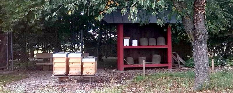 Bienenstand, Imker, Mundenhof, © baden.fm