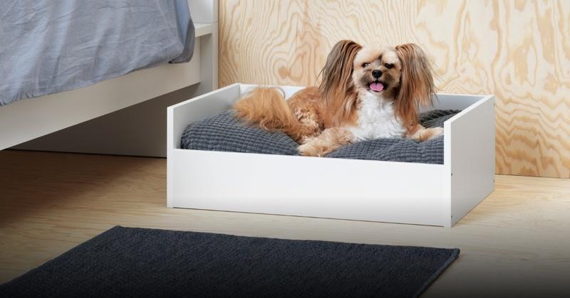 Hunde, Möbel, Tiere, Ikea, © Marcus Hansen - Ikea
