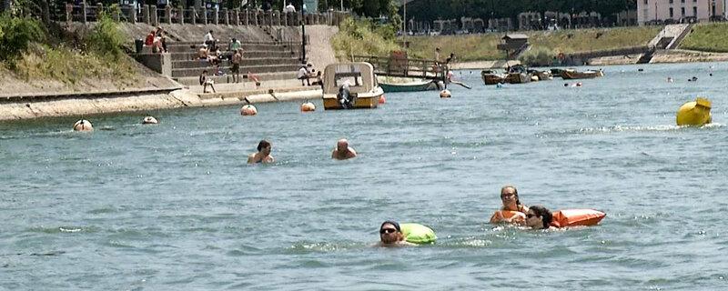 Im Rhein Schwimmen