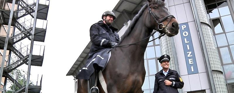 Polizei, Pferd, Reiterstaffel, © baden.fm