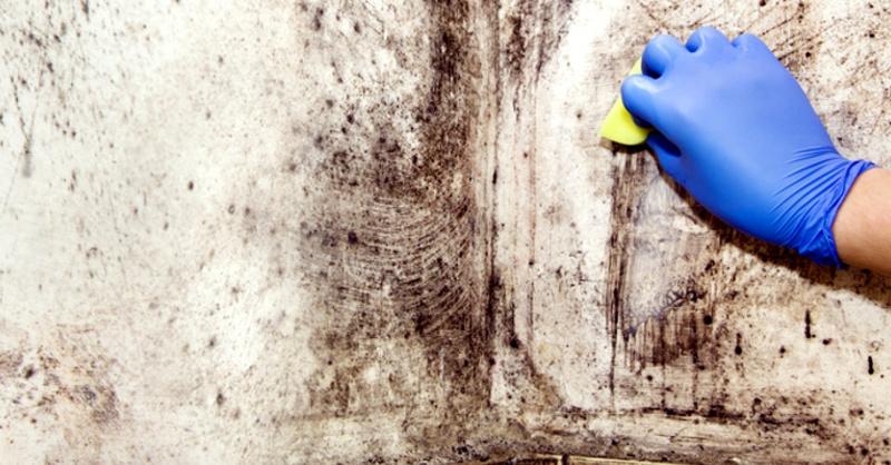 © vera7388 - Fotolia.com