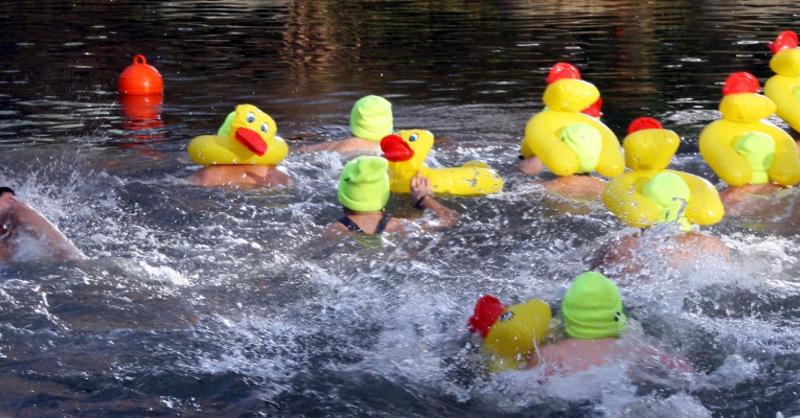 Neujahrsschwimmen, Rheinau, Linx, © Sonja Manßhardt - WeberHaus GmbH & Co. KG