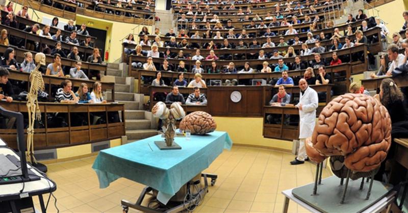 Medizinstudium, Vorlesung, Anatomie, © Waltraud Grubitzsch - dpa