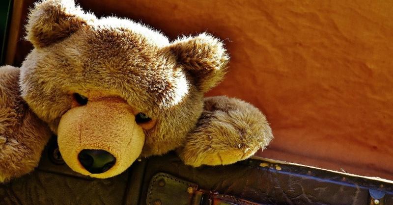 Teddybär, Stofftier, Kuscheltier, © Pixabay