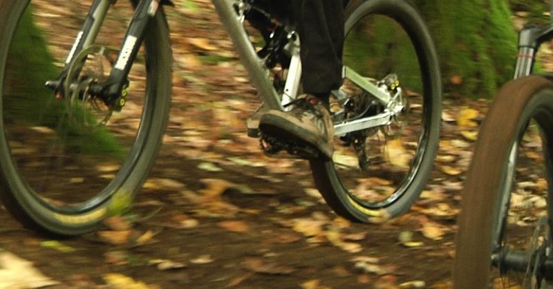 Mountainbike, Fahrrad, Wald, © baden.fm