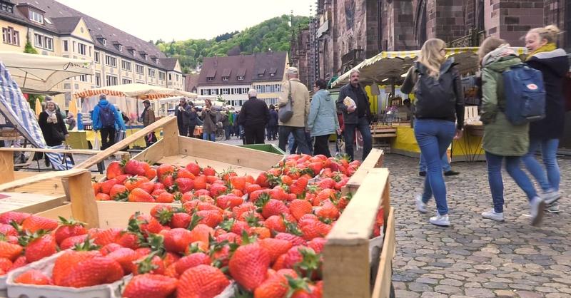 Obst, Münstermarkt, Erdbeeren, © baden.fm