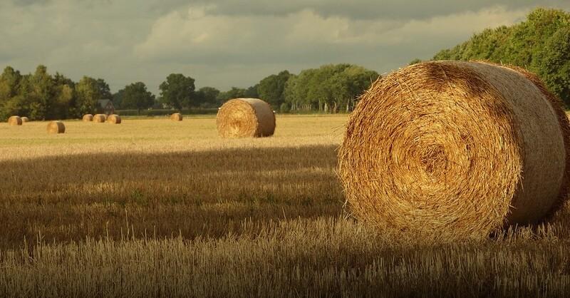 Ernte, Heuballen, Stroh, © Pixabay (Symbolbild)