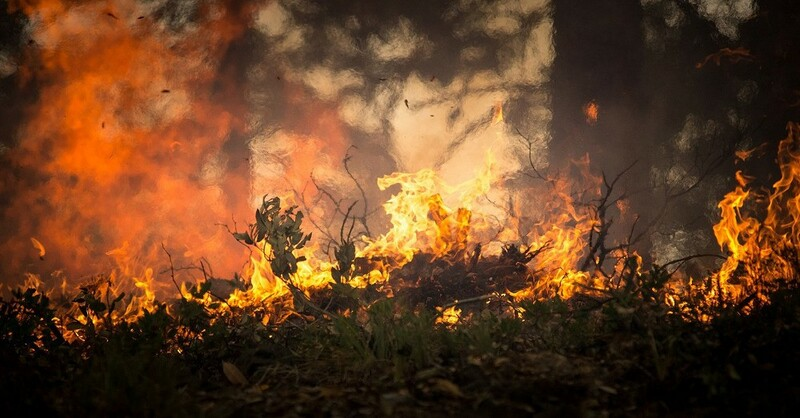 Waldbrand, Feuer, Flammen, © Pixabay (Symbolbild)