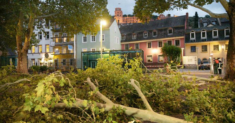 Sturmtief, Fabienne, Eppelheim, Bäume, © R. Priebe - PR-Video / dpa