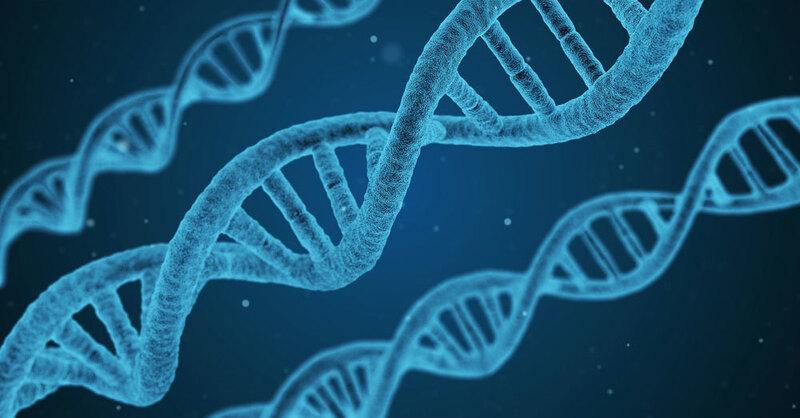 DNA, DNS, Genetik, Fingerabdruck, Abgleich, Labor, © Pixabay (Symbolbild)
