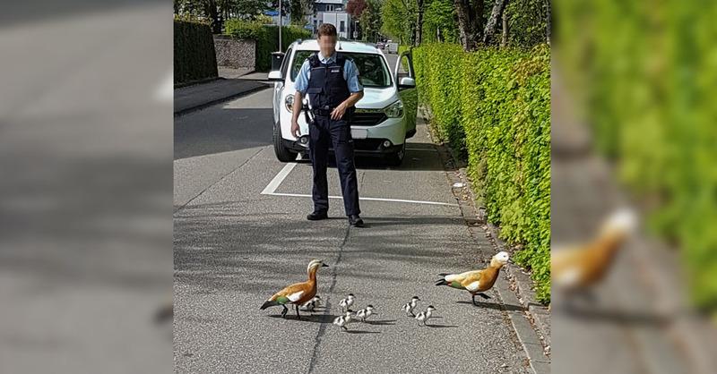 © Bild: Polizeipräsidium Freiburg