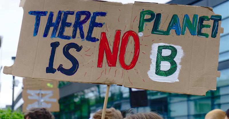 Symbolbild Umweltschutzdemonstration, © pixabay