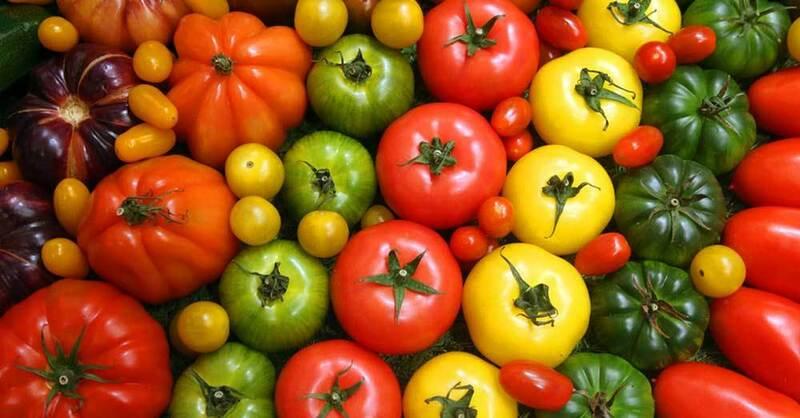 Tomaten, Gemüse, Ernährung, © Wolfgang Kumm - dpa