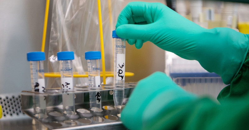 Labortest, Untersuchung, Probe, Medizin, Coronavirus, © Marijan Murat - dpa (Symbolbild)