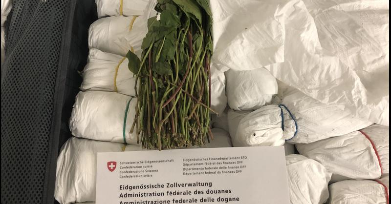 © Eidgenössische Zollverwaltung