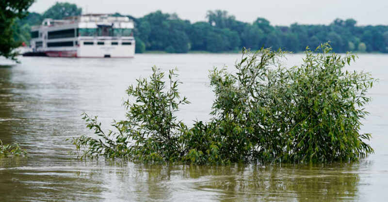 Rhein, Hochwaser, Fluss, Überschwemmung, Überflutung, © Uwe Anspach - dpa (Symbolbild)