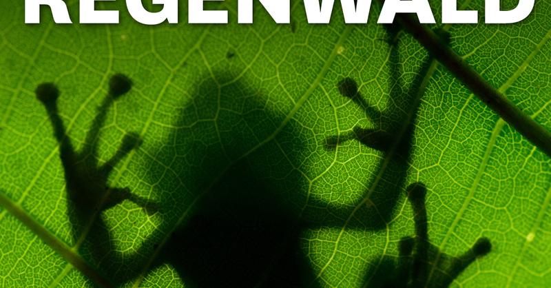 MUNDOLOGIA & WORLD INSIGHT: Abenteuer Regenwald, © © Veranstalter