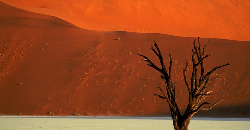 Namibia – Leben in extremer Landschaft, © © Veranstalter