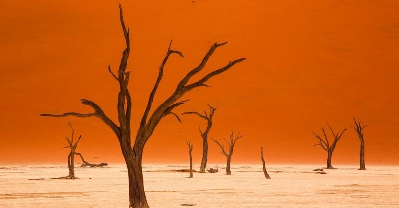 Traumhaftes Namibia - von und mit Andreas Huber, © © Veranstalter