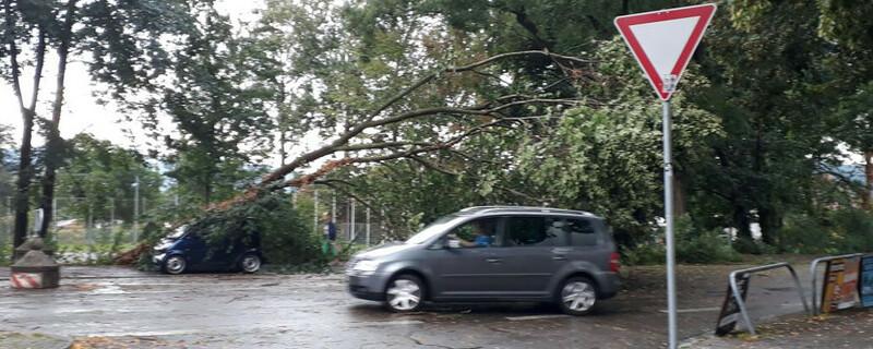 Unwetter, Baum, Auto, © baden.fm (Hörerfoto)