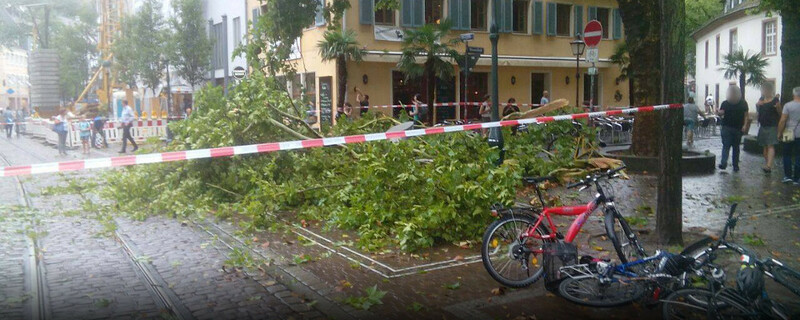 Unwetter, Gewitter, Baum, © baden.fm